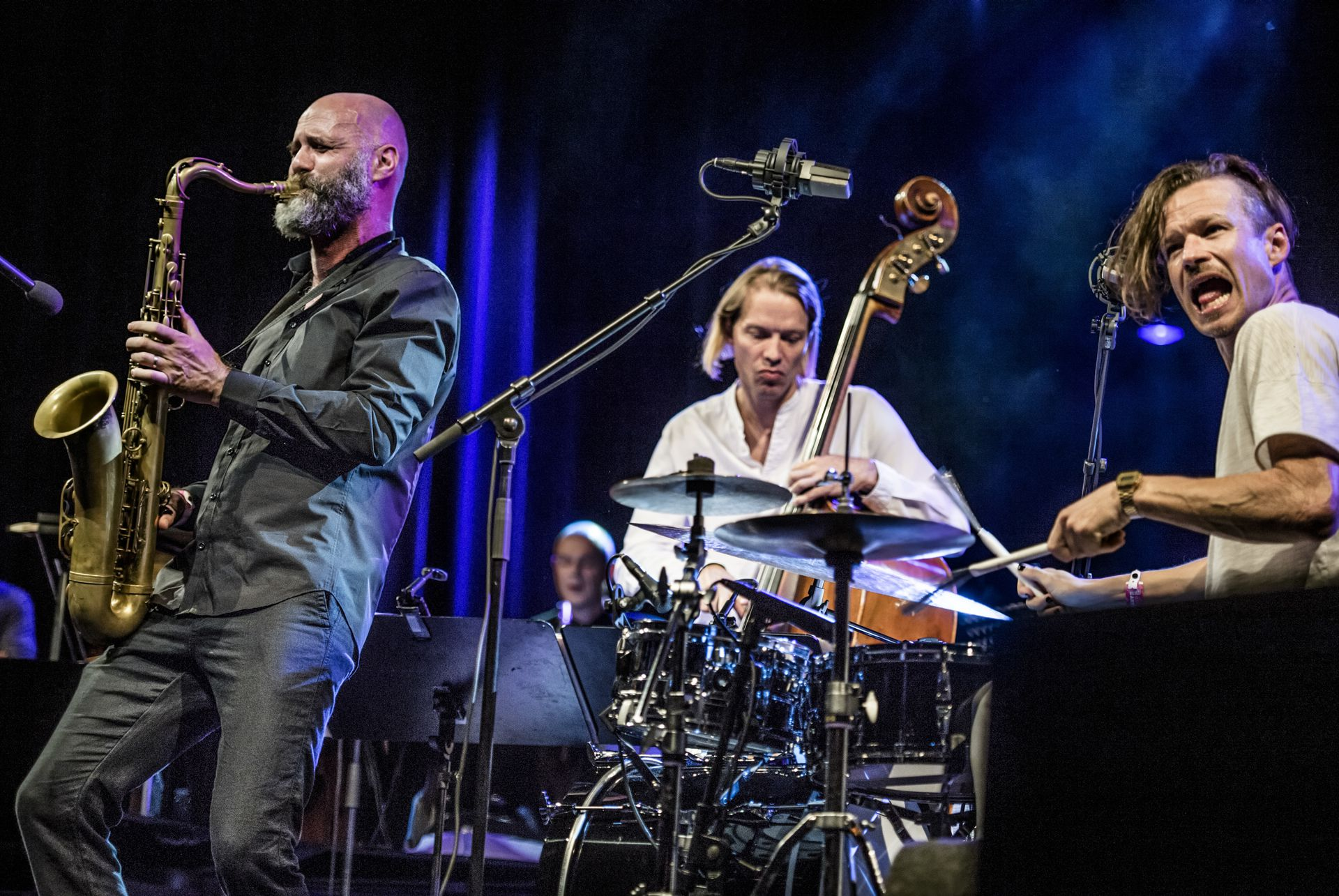 with Phronesis at North Sea Jazz festival, 2017